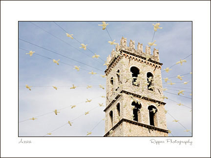 Fine Art Photorgaphy 2007 Italy Trip: Church and Doves