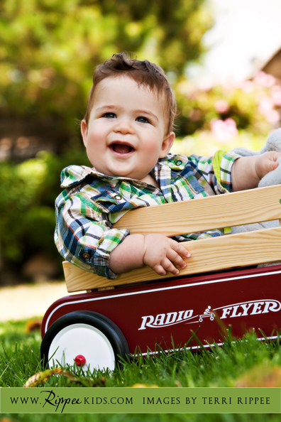 Babies, Wagons, and Doggies: Micah in Radio Flyer Wagon