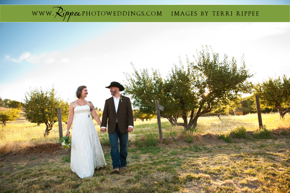 Menghini Winery Wedding: Taking a Stroll