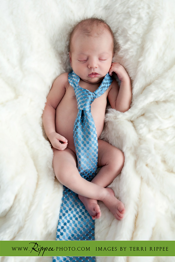 Newborn photo session Baby Jacob: Jacob with Tie on