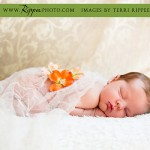Baby Lila Newborn Photo Session