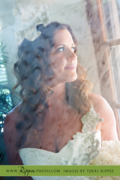 Borrego Springs Wedding: The Beautiful Bride Kristin