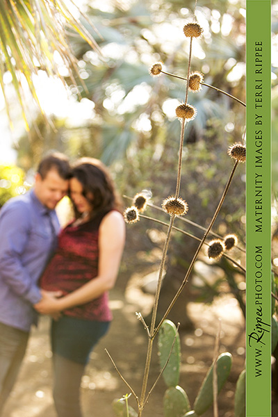 Jenn and Jason's Maternity, Balboa Park: Couple Among Nature