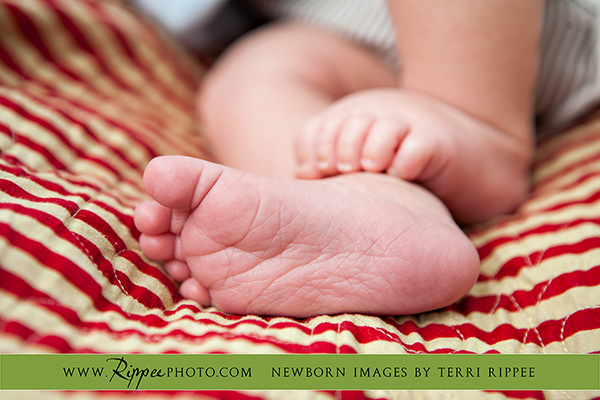 Newborn Baby Dane:  Feet on Red and White Striped Blanket