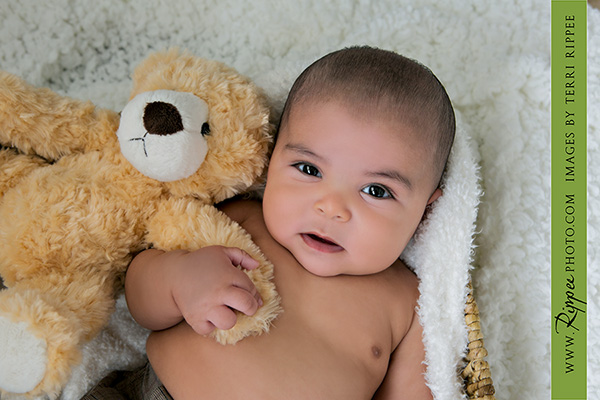Newborn Baby Dominick With a Bear