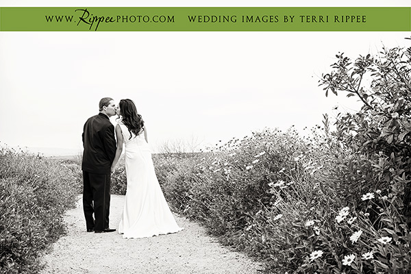 San Diego Wedding Photographer ~ Terri Rippee